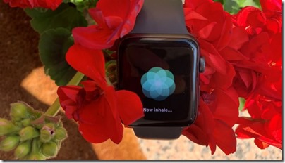 apple-watch-inhale-respirazione-HRV-min